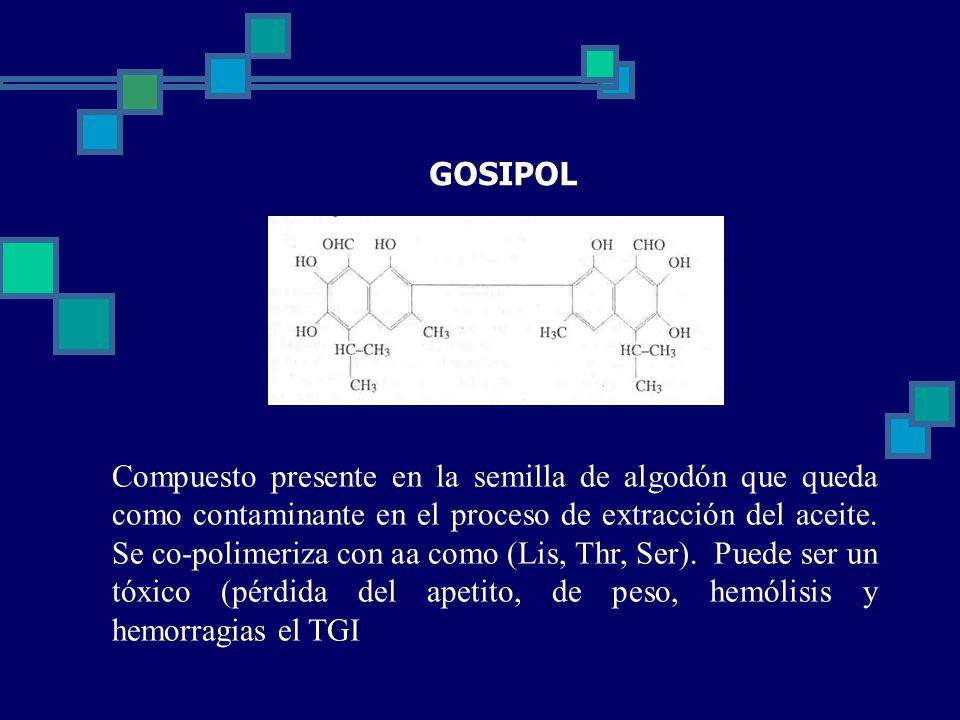 GOSIPOL Compuesto presente en la semilla de algodón que queda como contaminante en el proceso de extracción del aceite.
