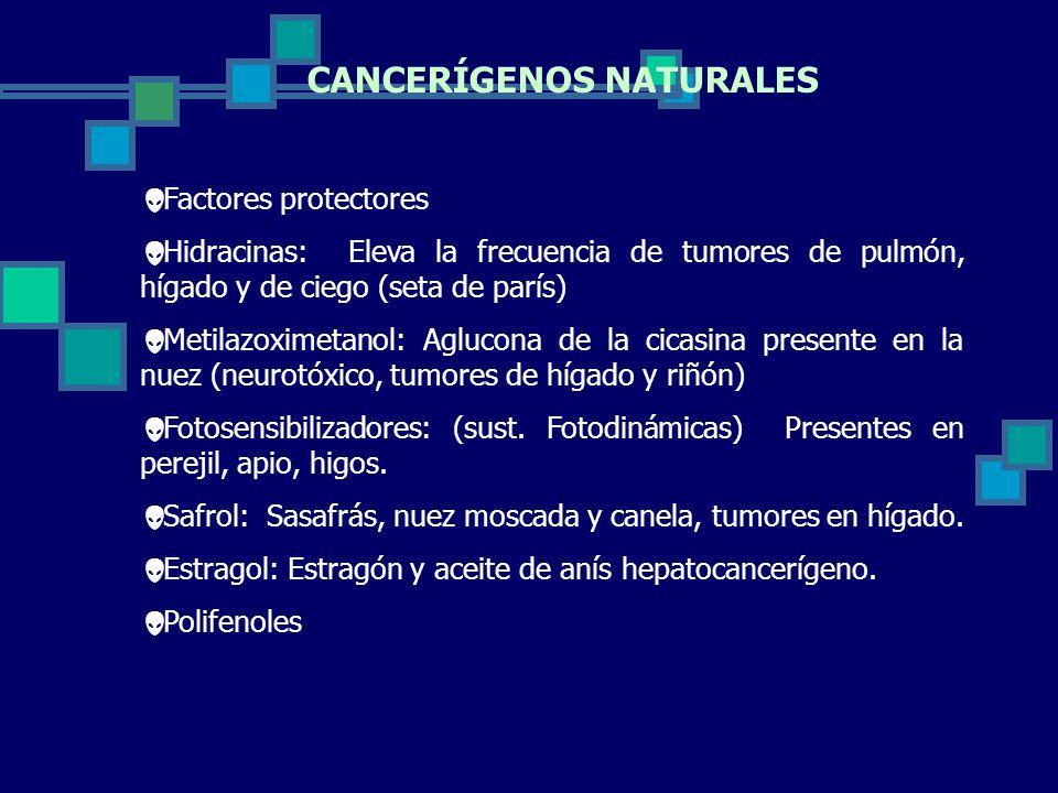 CANCERÍGENOS NATURALES Factores protectores Hidracinas: Eleva la frecuencia de tumores de pulmón, hígado y de ciego (seta de parís) Metilazoximetanol: Aglucona de la cicasina presente en la nuez (neurotóxico, tumores de hígado y riñón) Fotosensibilizadores: (sust.