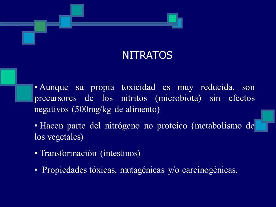 NITRATOS Aunque su propia toxicidad es muy reducida, son precursores de los nitritos (microbiota) sin efectos negativos (500mg/kg de alimento) Hacen parte del nitrógeno no proteico (metabolismo de los vegetales) Transformación (intestinos) Propiedades tóxicas, mutagénicas y/o carcinogénicas.