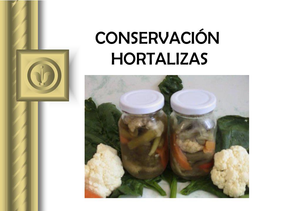 CONSERVACIÓN HORTALIZAS