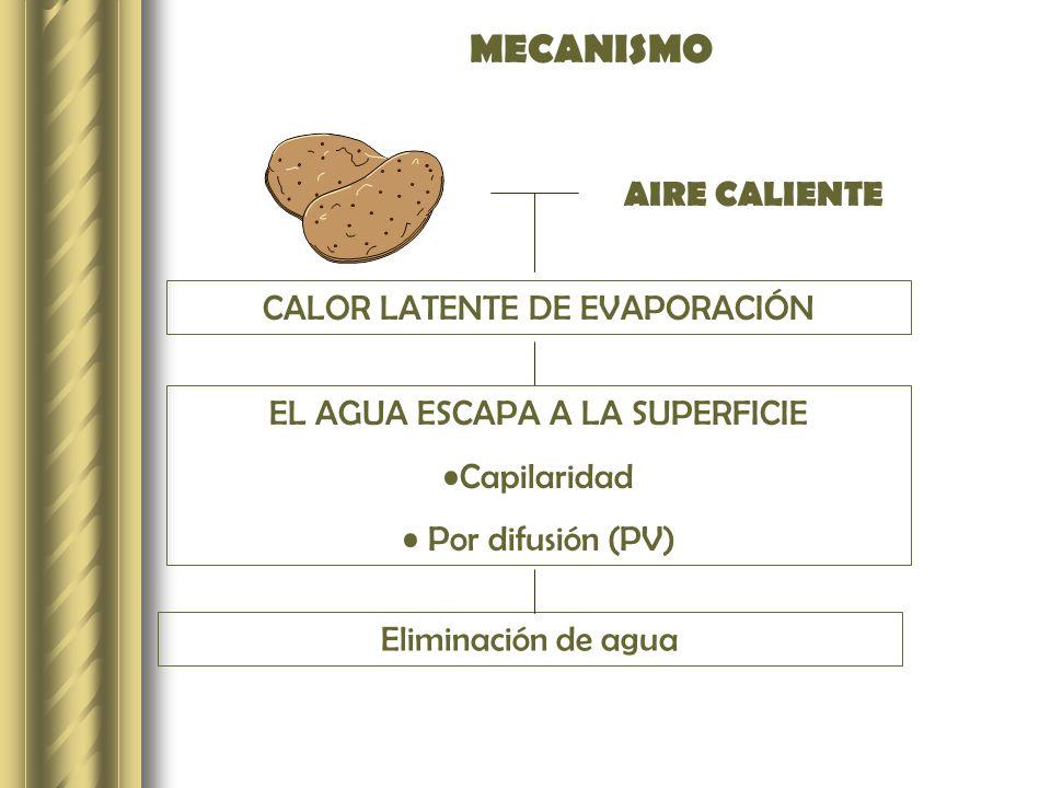 MECANISMO AIRE CALIENTE CALOR LATENTE DE EVAPORACIÓN EL AGUA ESCAPA A LA SUPERFICIE Capilaridad Por difusión (PV) Eliminación de agua