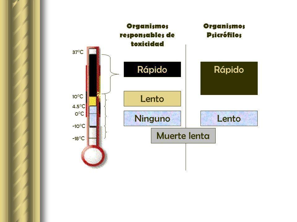REFRIGERACIÓN Método benigno de conservación Pocos efectos en características organolépticas y VN Alimento0°C22°C38°C Carne de res Frutas Hortalizas Raíces 6-10 días 2-180 3-20 90-300 1 día 1-20 1-7 7-50 < 1 día < 1 1-3 2-20