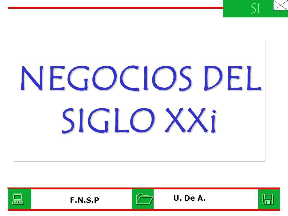 NEGOCIOS DEL SIGLO XXi SI U. De A. F.N.S.P