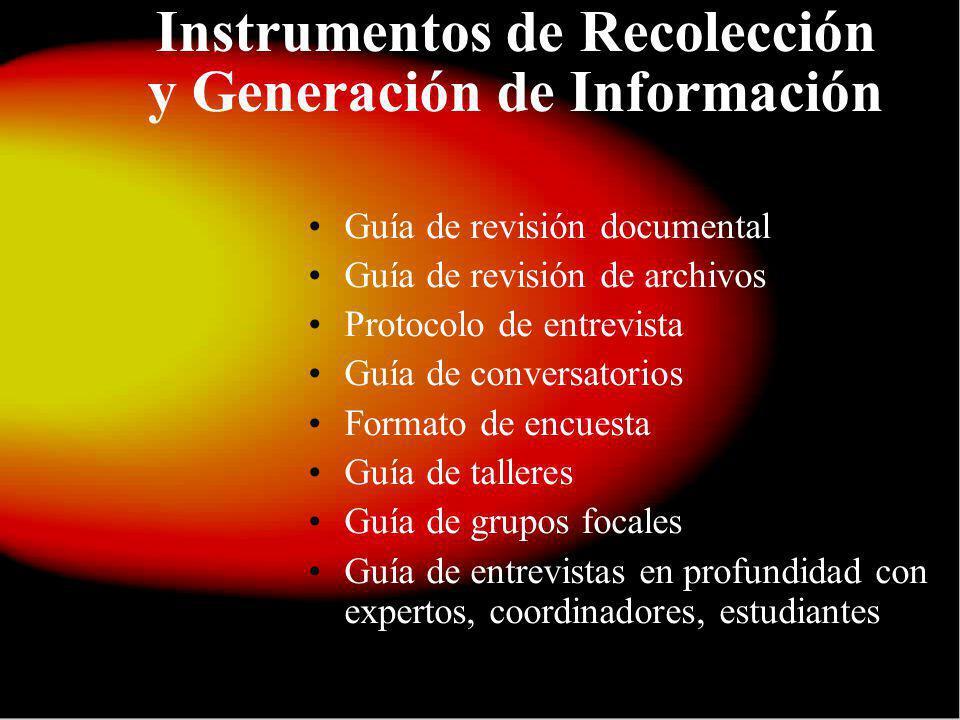 Instrumentos de Recolección y Generación de Información Guía de revisión documental Guía de revisión de archivos Protocolo de entrevista Guía de conve