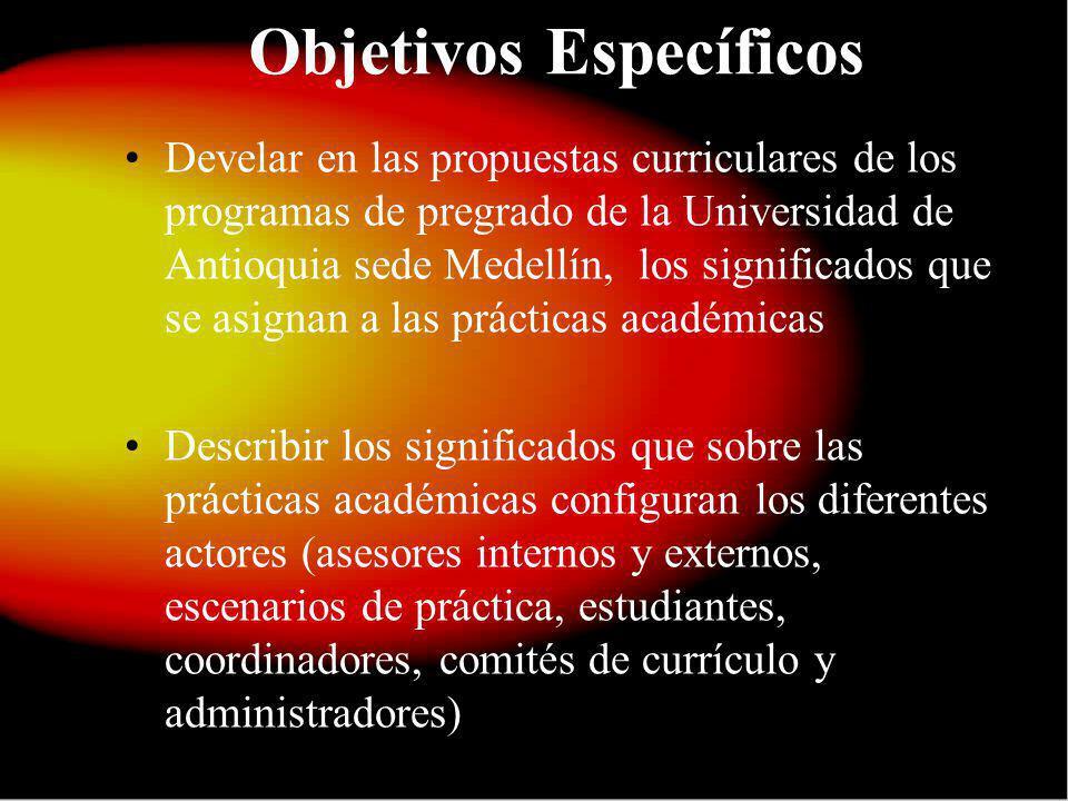 Objetivos Específicos Develar en las propuestas curriculares de los programas de pregrado de la Universidad de Antioquia sede Medellín, los significad