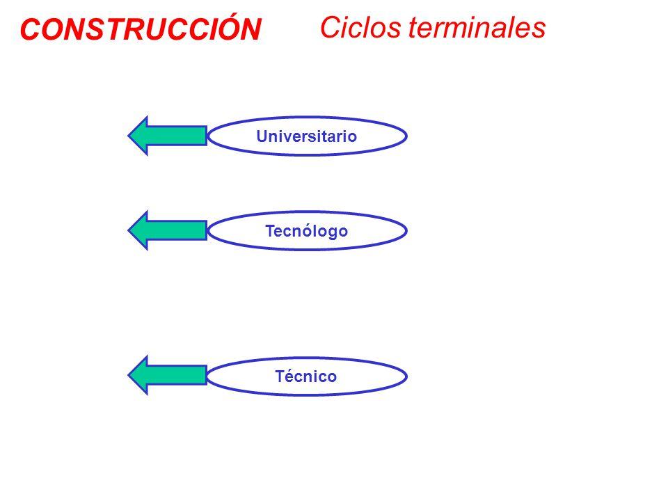 Técnico Tecnólogo Universitario Ciclos terminales CONSTRUCCIÓN