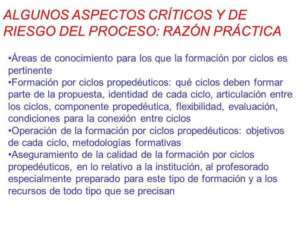 ALGUNOS ASPECTOS CRÍTICOS Y DE RIESGO DEL PROCESO: RAZÓN PRÁCTICA Áreas de conocimiento para los que la formación por ciclos es pertinente Formación p