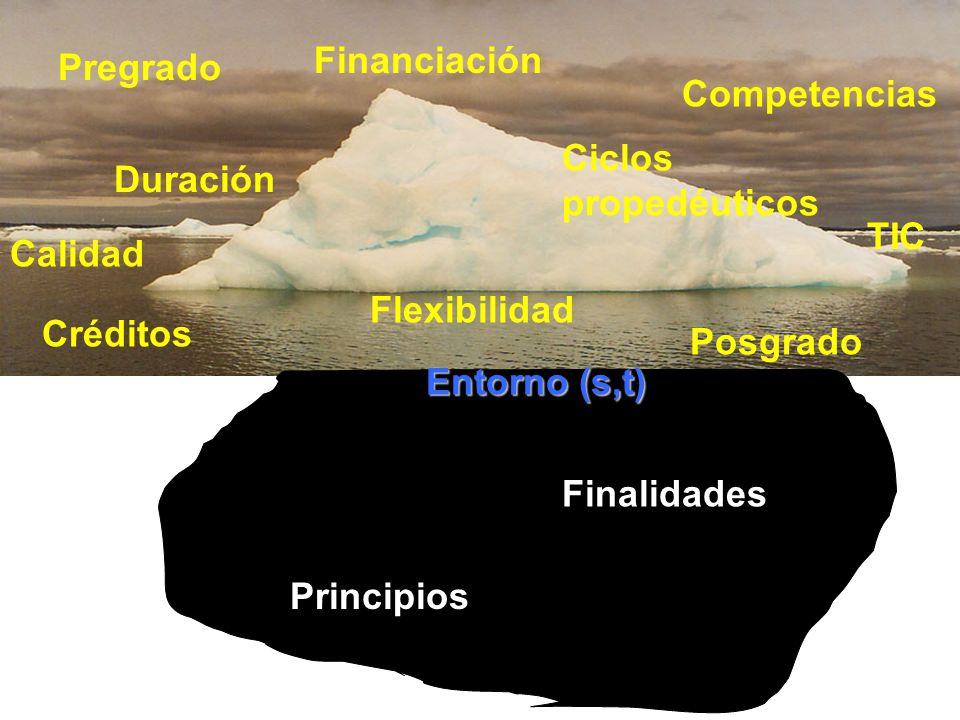 Entorno (s,t) Principios Finalidades Pregrado Posgrado Ciclos propedéuticos Créditos Flexibilidad TIC Financiación Duración Calidad Competencias