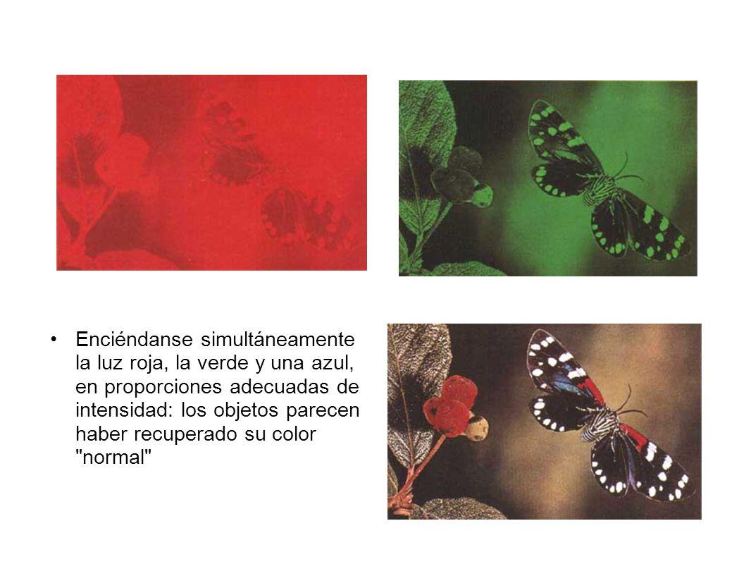 Enciéndanse simultáneamente la luz roja, la verde y una azul, en proporciones adecuadas de intensidad: los objetos parecen haber recuperado su color