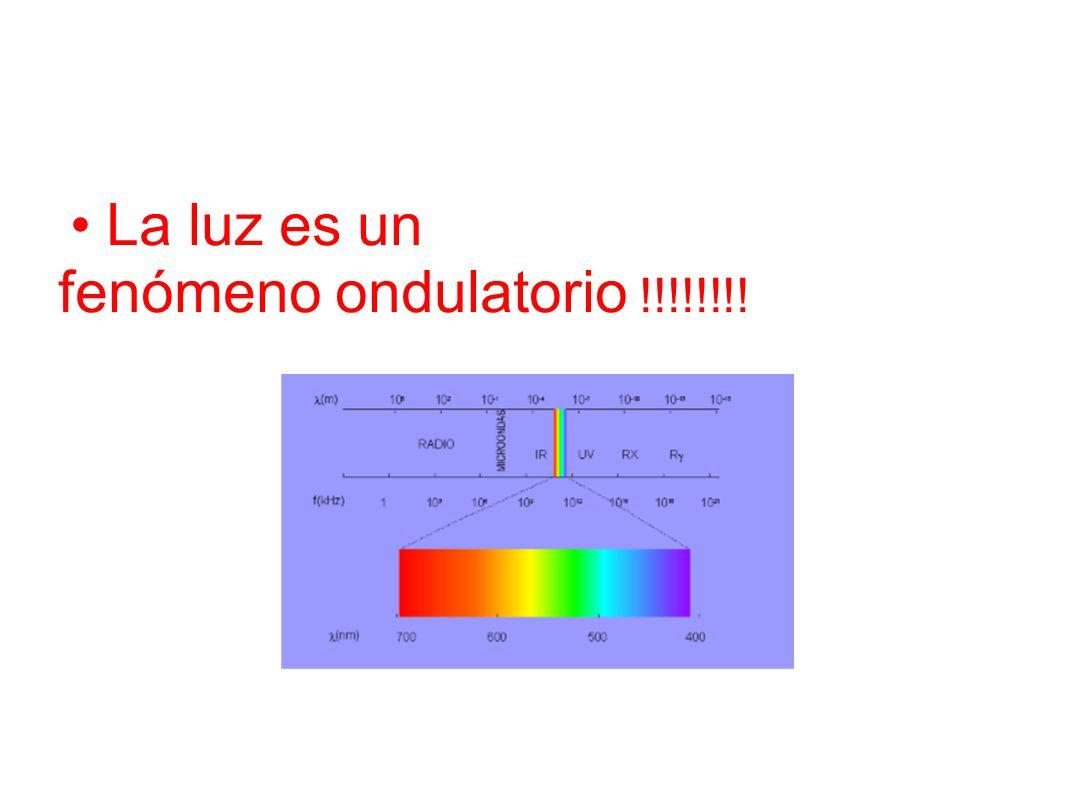 La luz es un fenómeno ondulatorio !!!!!!!!