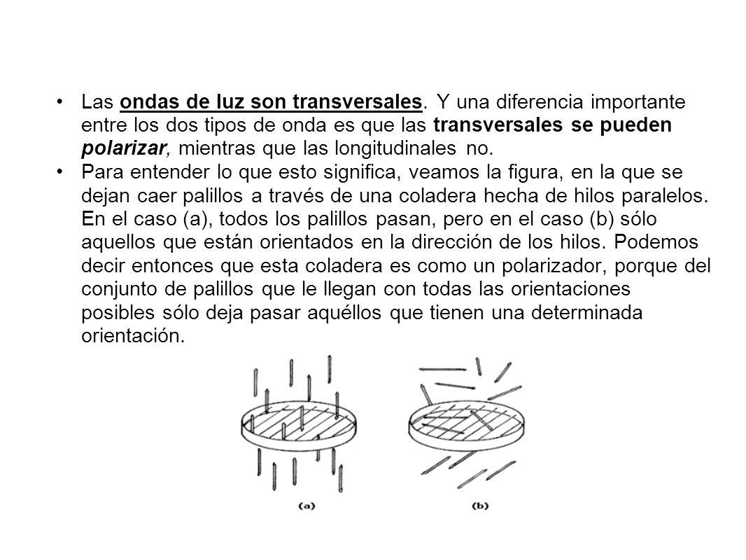 Las ondas de luz son transversales. Y una diferencia importante entre los dos tipos de onda es que las transversales se pueden polarizar, mientras que