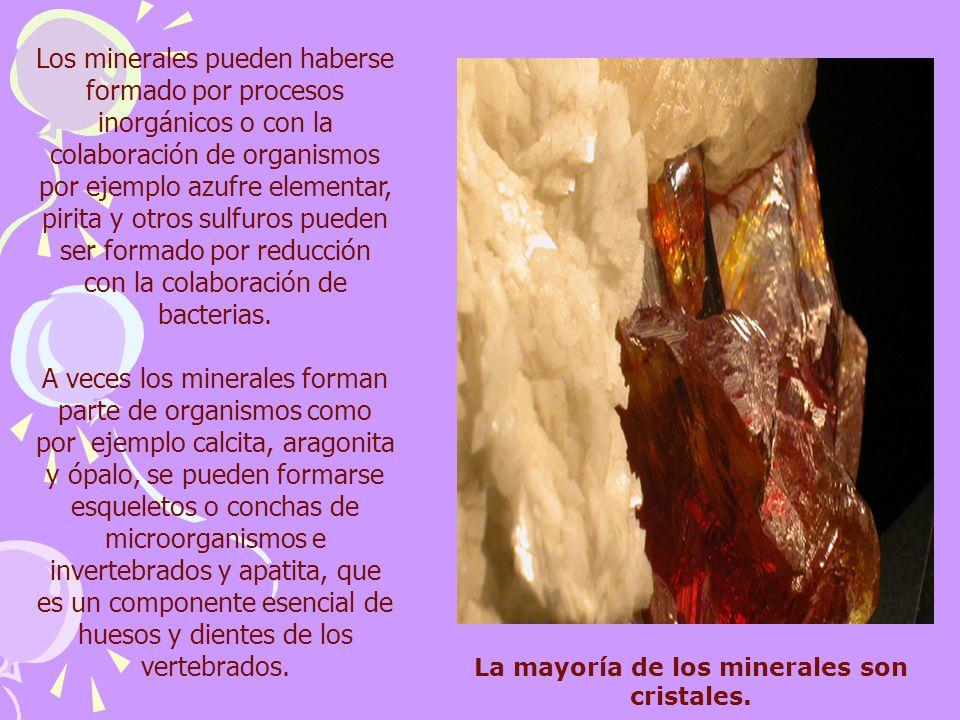 La mayoría de los minerales son cristales. Los minerales pueden haberse formado por procesos inorgánicos o con la colaboración de organismos por ejemp