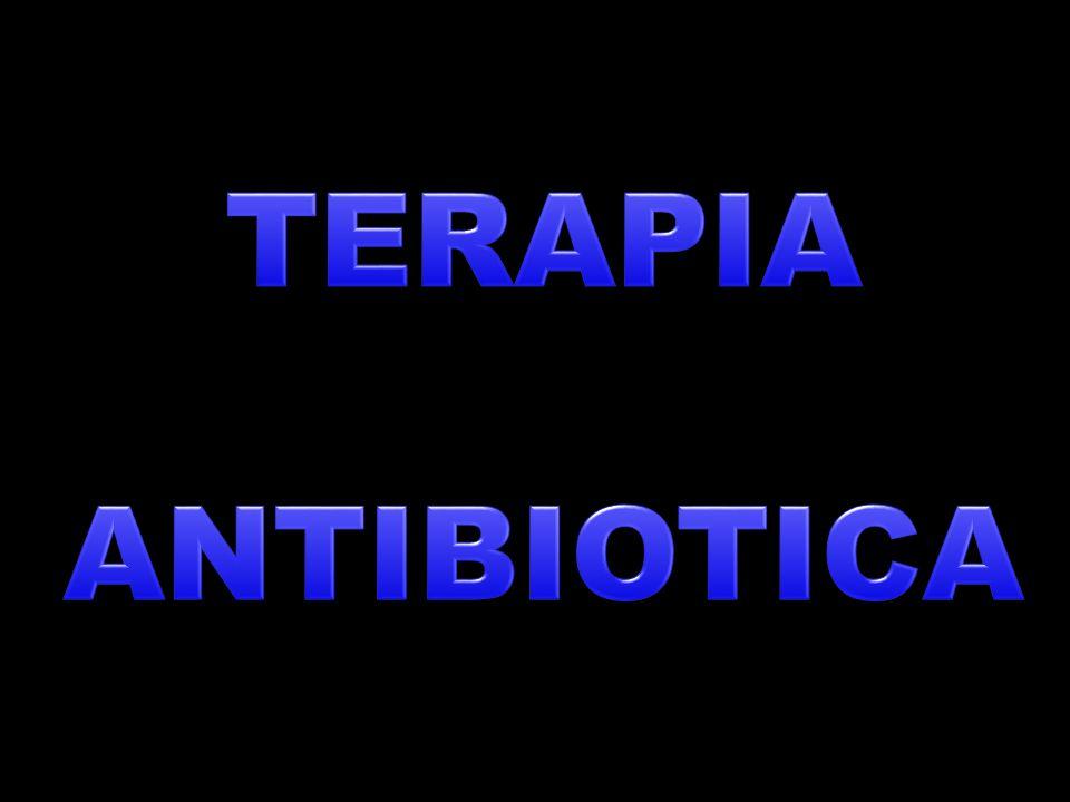 SEGUNDA LINEA DE MANEJO PACIENTES NO ALÉRGICOS BETALACTÁMICOS COMBINADOS: AMOXICILINA + METRONIDAZOL CEFALOSPORINAS + METRONIDAZOL AMOXICILINA + ACIDO CLAVULÁNICO AMPICILINA + SULBACTAM AMOXICILINA + GENTAMICINA