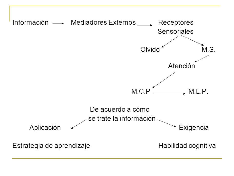 Información Mediadores Externos Receptores Sensoriales Olvido M.S. Atención M.C.P M.L.P. De acuerdo a cómo se trate la información Aplicación Exigenci