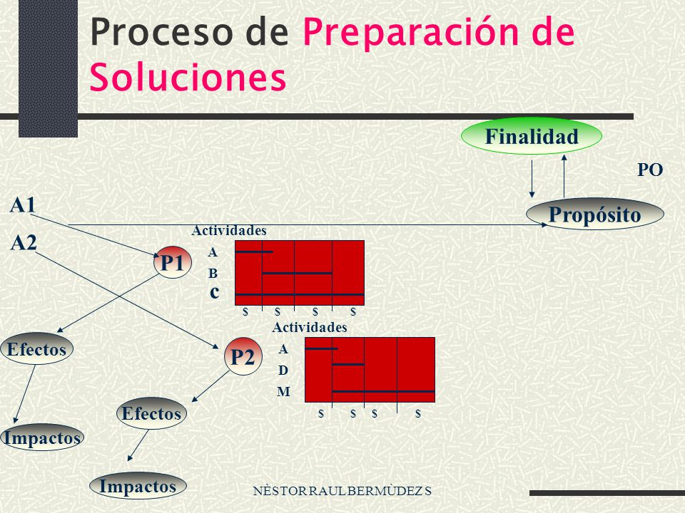 NÈSTOR RAUL BERMÙDEZ S Proceso de Preparación de Soluciones Finalidad Propósito PO A1 A2 P1 Efectos Impactos P2 Efectos Impactos Actividades A B c A D
