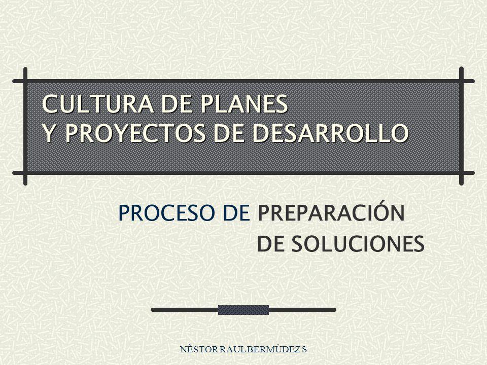 NÈSTOR RAUL BERMÙDEZ S Proceso de Identificación de Soluciones propósito Problema causa Efecto(-) Finalidad Efecto + Impacto Línea Estratégica....