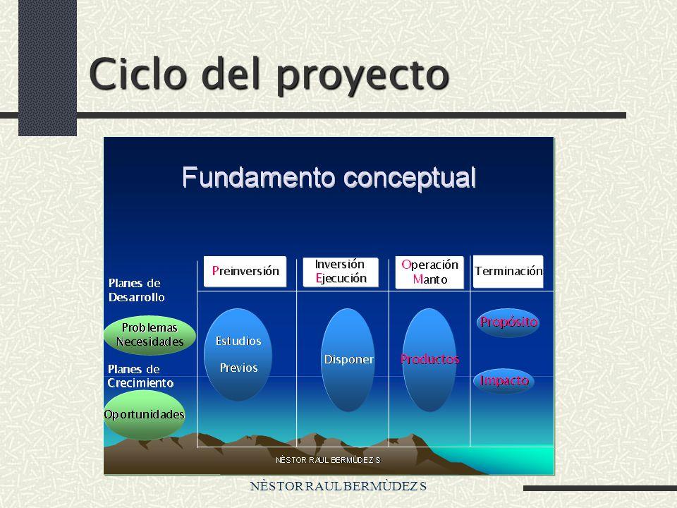 NÈSTOR RAUL BERMÙDEZ S Fundamento conceptual Ciclo del Proyecto Proyecto A2 Preinversión Id entificación de soluciones Pr eparación de soluciones Ev aluación de soluciones Financiación del Proyecto S ostenibilidad del Proyecto A1 A2 A1 A2 40% 20% Formulación de soluciones
