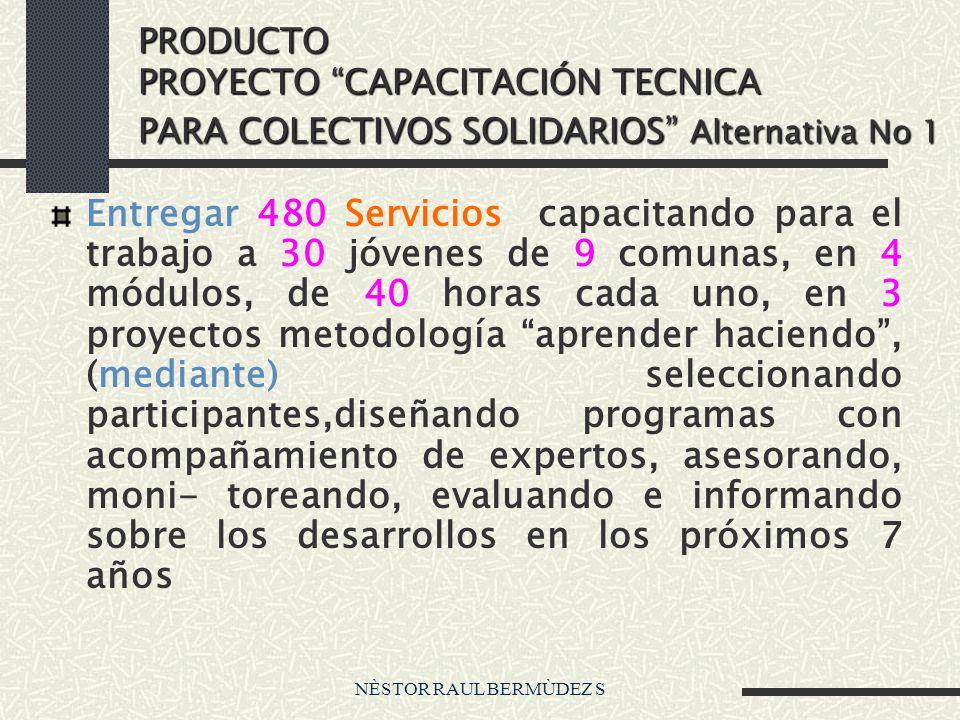 NÈSTOR RAUL BERMÙDEZ S PRODUCTO PROYECTO CAPACITACIÓN TECNICA PARA COLECTIVOS SOLIDARIOS Alternativa No 1 Entregar 480 Servicios capacitando para el t