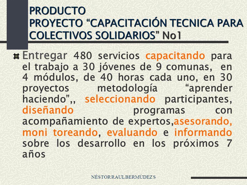 NÈSTOR RAUL BERMÙDEZ S PRODUCTO PROYECTO CAPACITACIÓN TECNICA PARA COLECTIVOS SOLIDARIOS No1 Entregar 480 servicios capacitando para el trabajo a 30 j