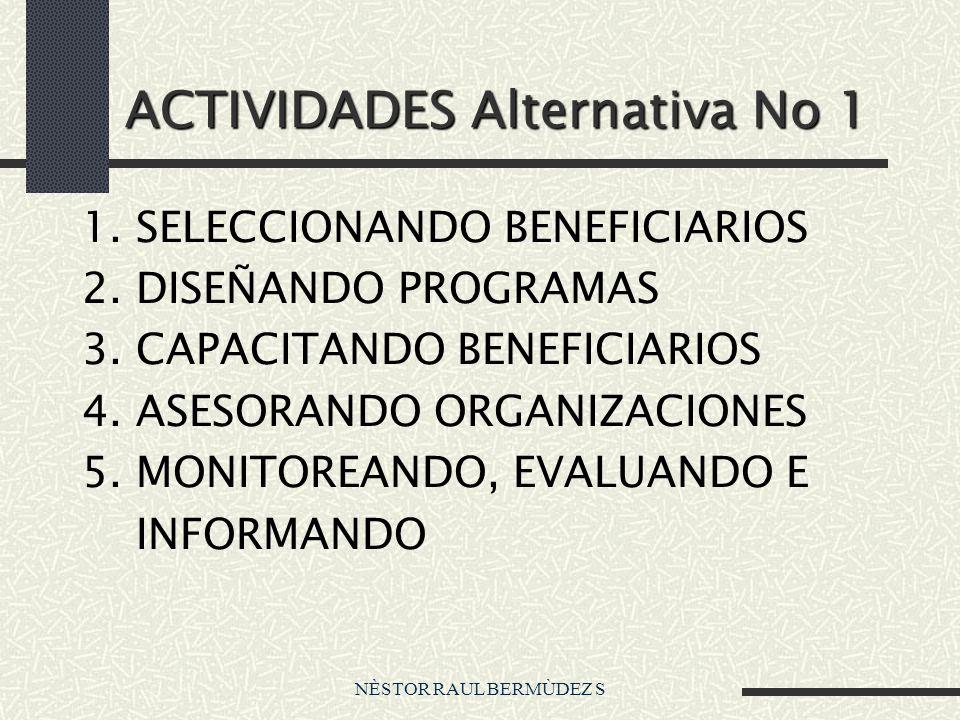 NÈSTOR RAUL BERMÙDEZ S ACTIVIDADES Alternativa No 1 1. SELECCIONANDO BENEFICIARIOS 2. DISEÑANDO PROGRAMAS 3. CAPACITANDO BENEFICIARIOS 4. ASESORANDO O