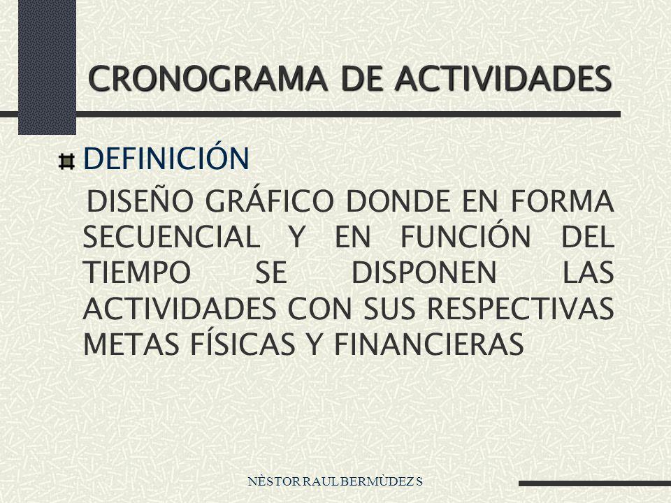 NÈSTOR RAUL BERMÙDEZ S CRONOGRAMA DE ACTIVIDADES DEFINICIÓN DISEÑO GRÁFICO DONDE EN FORMA SECUENCIAL Y EN FUNCIÓN DEL TIEMPO SE DISPONEN LAS ACTIVIDADES CON SUS RESPECTIVAS METAS FÍSICAS Y FINANCIERAS
