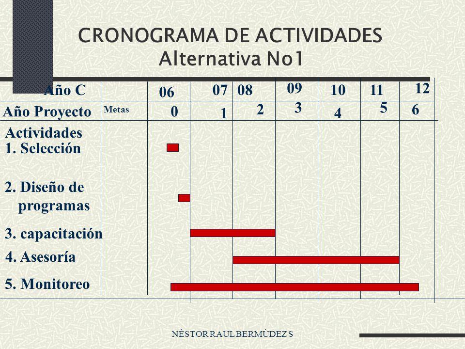 NÈSTOR RAUL BERMÙDEZ S CRONOGRAMA DE ACTIVIDADES Alternativa No1 Actividades 1. Selección 2. Diseño de programas 3. capacitación 4. Asesoría 5. Monito