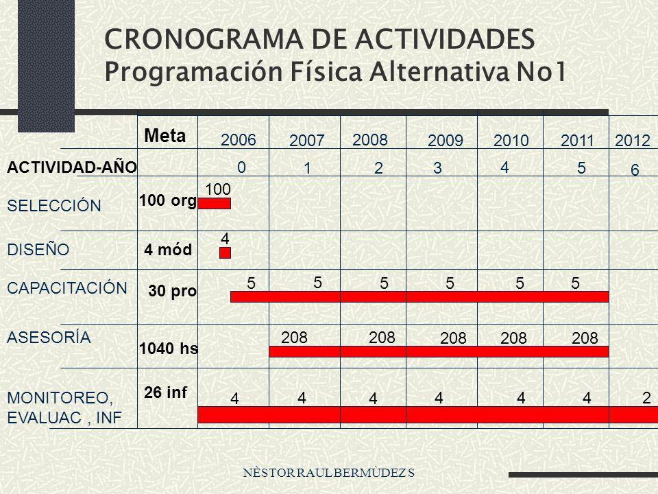 NÈSTOR RAUL BERMÙDEZ S CRONOGRAMA DE ACTIVIDADES Programación Física Alternativa No1 ACTIVIDAD-AÑO SELECCIÓN DISEÑO CAPACITACIÓN ASESORÍA MONITOREO, E