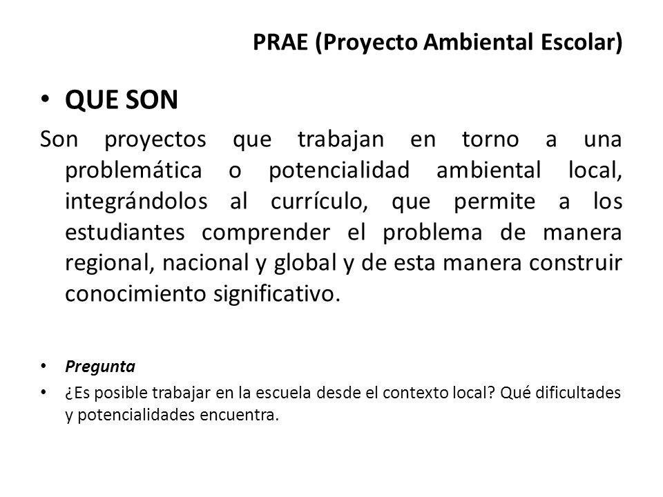 PRAE (Proyecto Ambiental Escolar) QUE SON Son proyectos que trabajan en torno a una problemática o potencialidad ambiental local, integrándolos al cur