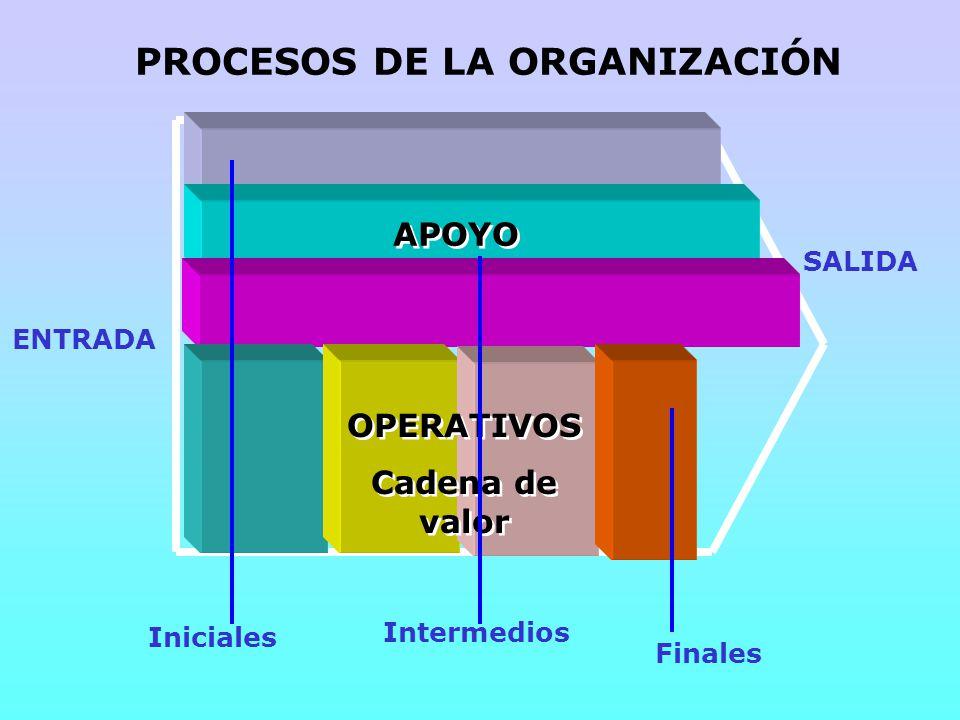 PROCESOS DE LA ORGANIZACIÓN ENTRADA SALIDA Iniciales Intermedios Finales OPERATIVOS Cadena de valor OPERATIVOS Cadena de valor APOYO