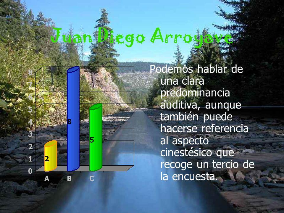 Juan Diego Arroyave Podemos hablar de una clara predominancia auditiva, aunque también puede hacerse referencia al aspecto cinestésico que recoge un tercio de la encuesta.