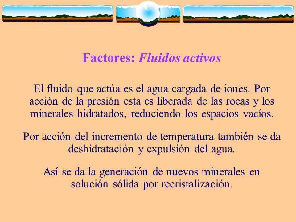 Factores: Fluidos activos El fluido que actúa es el agua cargada de iones. Por acción de la presión esta es liberada de las rocas y los minerales hidr