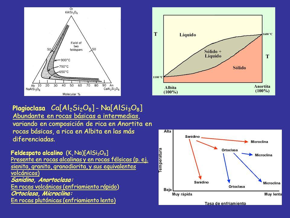 Plagioclasa Ca[Al 2 Si 2 O 8 ] - Na[AlSi 3 O 8 ] Abundante en rocas básicas a intermedias, variando en composición de rica en Anortita en rocas básica