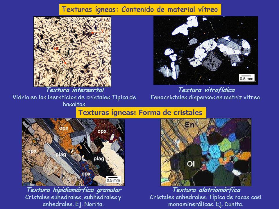 Ol V Textura hipidiomórfica granular Cristales euhedrales, subhedrales y anhedrales. Ej. Norita. Textura alotriomórfica Cristales anhedrales. Típica d