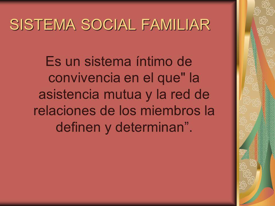 SISTEMA SOCIAL FAMILIAR Es un sistema íntimo de convivencia en el que la asistencia mutua y la red de relaciones de los miembros la definen y determinan.