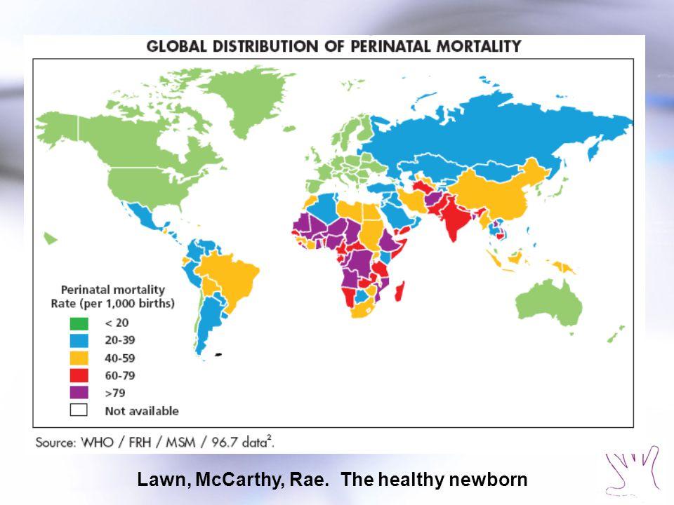 Lawn, McCarthy, Rae. The healthy newborn