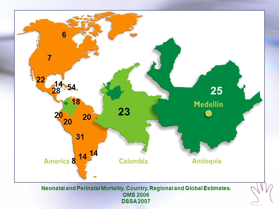 6 7 22 14 54 20 18 20 8 14 31 23 28 25 Neonatal and Perinatal Mortality. Country, Regional and Global Estimates. OMS 2006 DSSA 2007