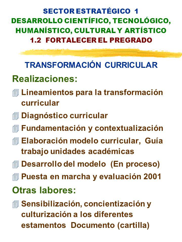 SECTOR ESTRATÉGICO 1 DESARROLLO CIENTÍFICO, TECNOLÓGICO, HUMANÍSTICO, CULTURAL Y ARTÍSTICO 1.2 FORTALECER EL PREGRADO TRANSFORMACIÓN CURRICULAR Realizaciones: 4Lineamientos para la transformación curricular 4Diagnóstico curricular 4Fundamentación y contextualización 4Elaboración modelo curricular, Guía trabajo unidades académicas 4Desarrollo del modelo (En proceso) 4Puesta en marcha y evaluación 2001 Otras labores: 4Sensibilización, concientización y culturización a los diferentes estamentos Documento (cartilla)