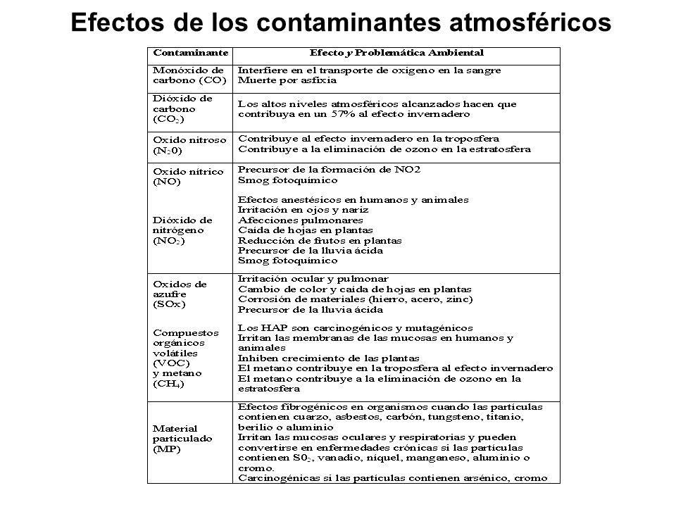 Efectos de los contaminantes atmosféricos