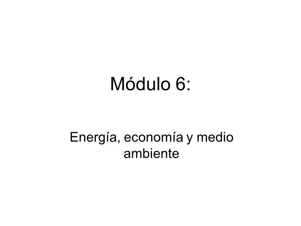 Connotaciones económicas de la relación energía y ambiente Internalización de las externalidades.