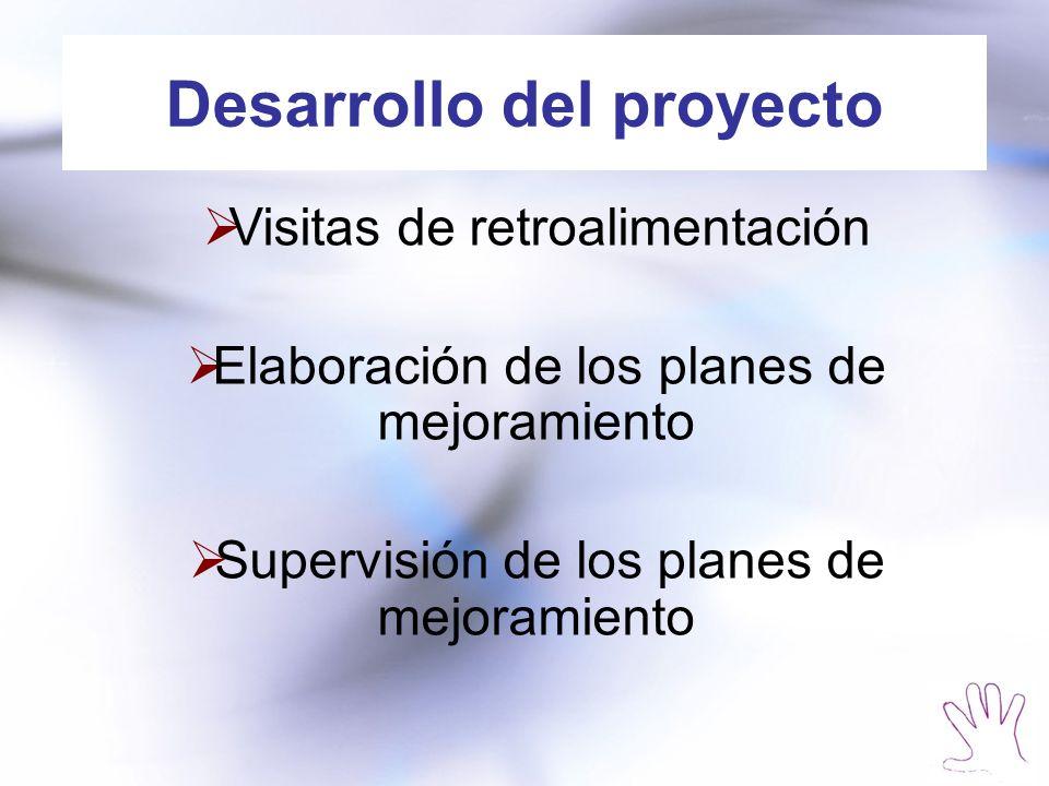Desarrollo del proyecto Visitas de retroalimentación Elaboración de los planes de mejoramiento Supervisión de los planes de mejoramiento