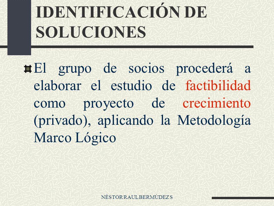 NÈSTOR RAUL BERMÙDEZ S IDENTIFICACIÓN DE SOLUCIONES El grupo de socios procederá a elaborar el estudio de factibilidad como proyecto de crecimiento (privado), aplicando la Metodología Marco Lógico