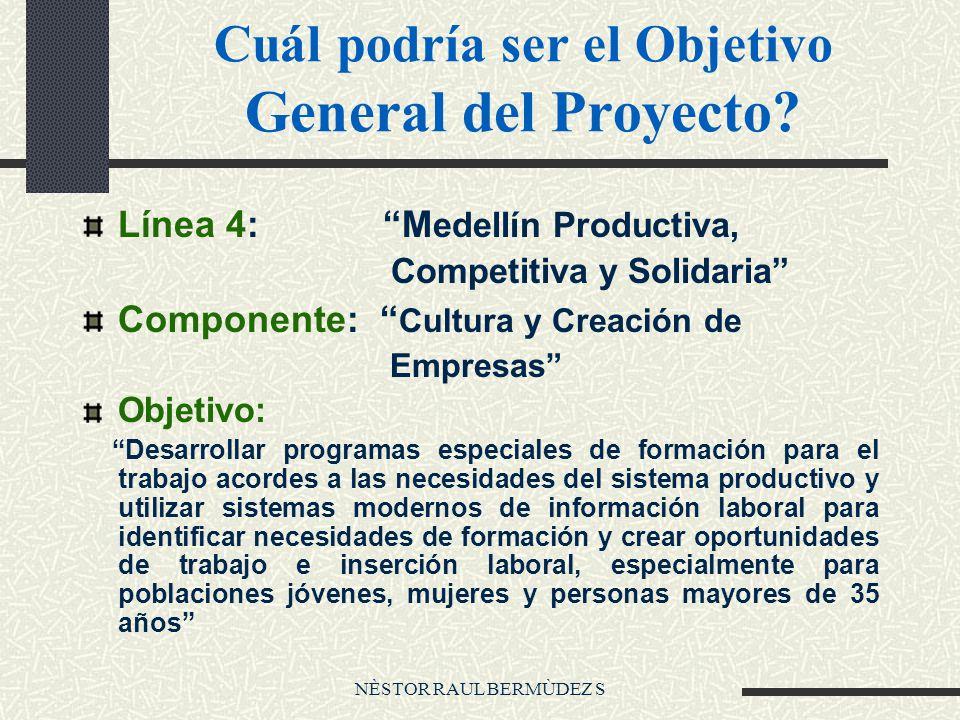 NÈSTOR RAUL BERMÙDEZ S Cuál podría ser el Objetivo General del Proyecto.