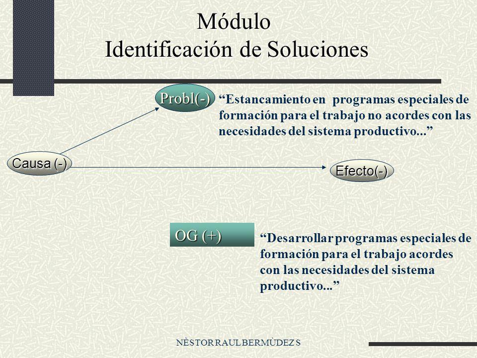 NÈSTOR RAUL BERMÙDEZ S Módulo Identificación de Soluciones Módulo Identificación de Soluciones Desarrollar programas especiales de formación para el trabajo acordes con las necesidades del sistema productivo...
