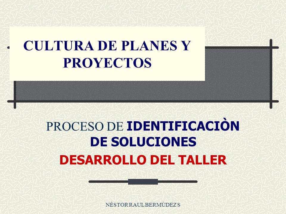 NÈSTOR RAUL BERMÙDEZ S CULTURA DE PLANES Y PROYECTOS PROCESO DE IDENTIFICACIÒN DE SOLUCIONES DESARROLLO DEL TALLER