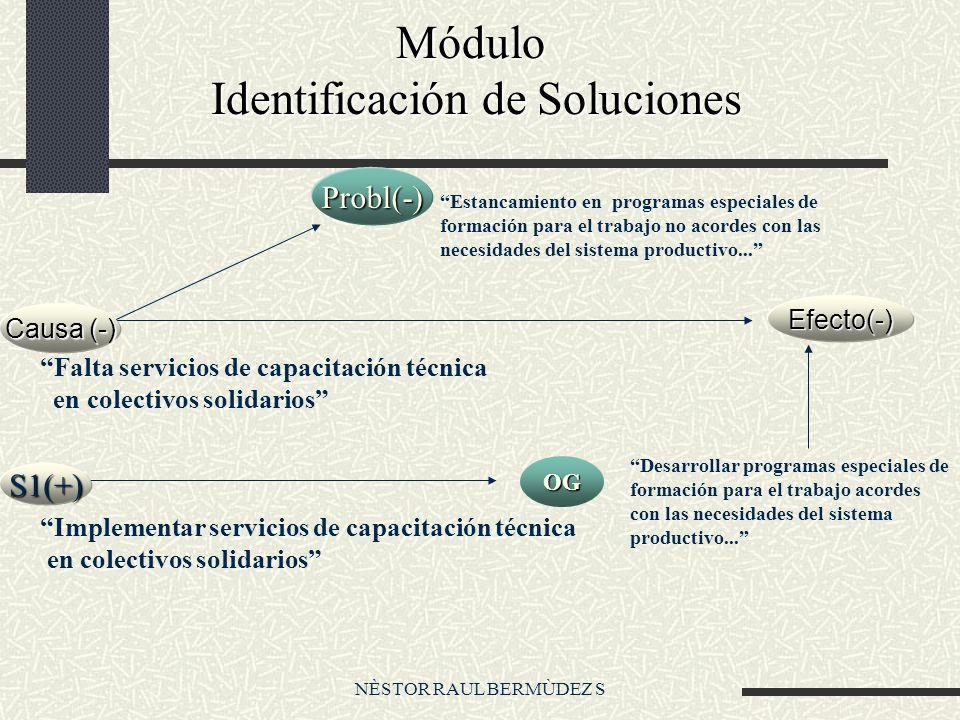 NÈSTOR RAUL BERMÙDEZ S Módulo Identificación de Soluciones Módulo Identificación de Soluciones Efecto(-) Probl(-) Desarrollar programas especiales de formación para el trabajo acordes con las necesidades del sistema productivo...