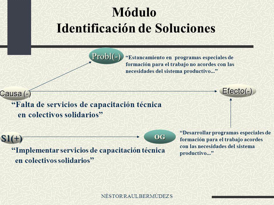 NÈSTOR RAUL BERMÙDEZ S Módulo Identificación de Soluciones Causa (-) Efecto(-) S1(+) Probl(-) Desarrollar programas especiales de formación para el trabajo acordes con las necesidades del sistema productivo...