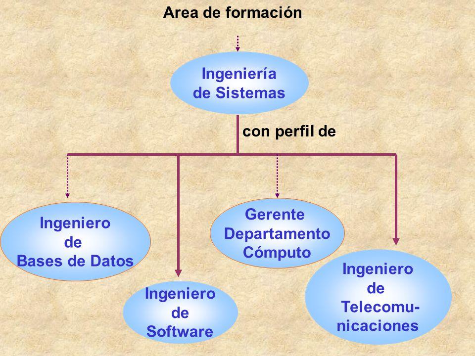 Ingeniero de Software Ingeniería de Sistemas con perfil de Area de formación Ingeniero de Bases de Datos Ingeniero de Telecomu- nicaciones Gerente Dep