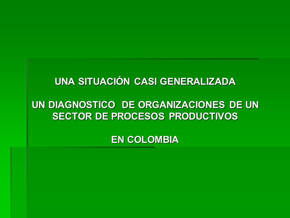 UNA SITUACIÓN CASI GENERALIZADA UN DIAGNOSTICO DE ORGANIZACIONES DE UN SECTOR DE PROCESOS PRODUCTIVOS EN COLOMBIA