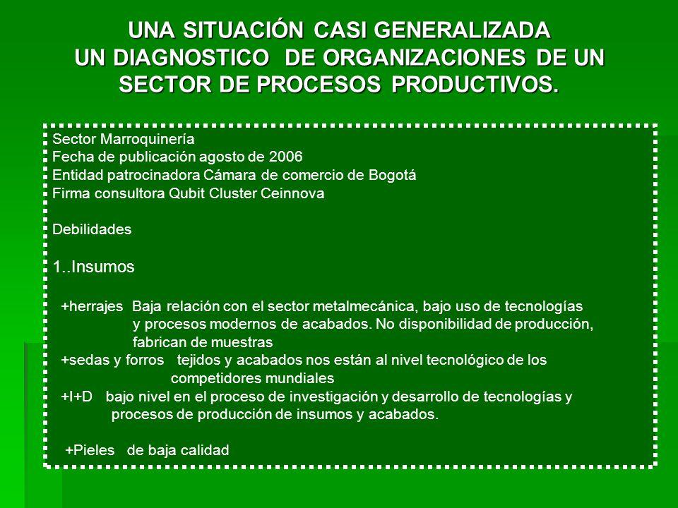 UNA SITUACIÓN CASI GENERALIZADA UN DIAGNOSTICO DE ORGANIZACIONES DE UN SECTOR DE PROCESOS PRODUCTIVOS.