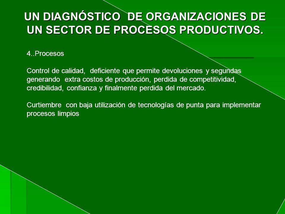 UN DIAGNÓSTICO DE ORGANIZACIONES DE UN SECTOR DE PROCESOS PRODUCTIVOS.